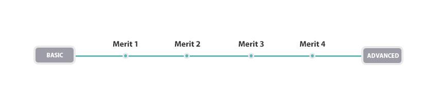 Raleigh Merit Lineup